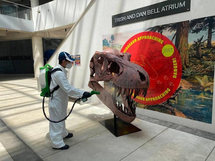 A crew member carries out intensive sanitizing of a dinosaur skull exhibit at the Frost Museum of Science, which reopened to visitors in June after a three-month closure prompted by the COVID-19 pandemic.