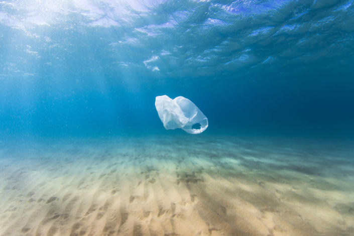 plastic bag (lindsay_imagery/ iStock/ Getty Images Plus)
