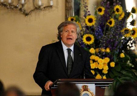 OAS Secretary-General Luis Almagro addresses the audience during an official visit to Honduras, in Tegucigalpa