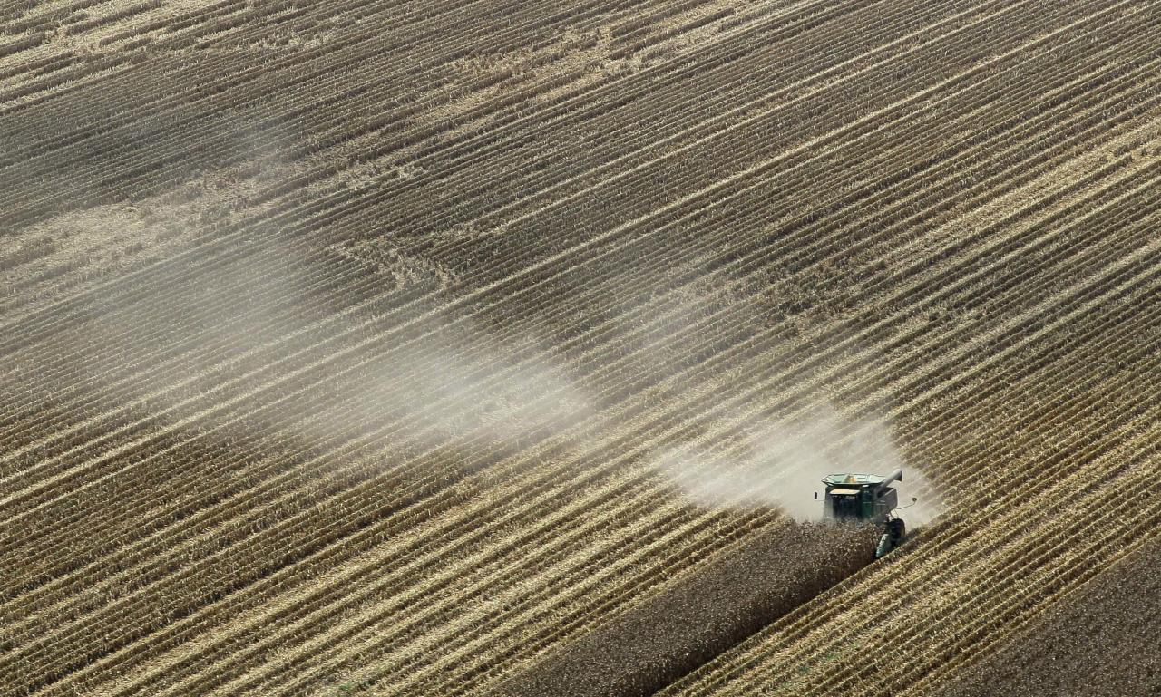 FILE - In this Aug. 16, 2012 file photo, dust is carried by the wind behind a combine harvesting corn in a field near Coy, Ark. A brutal combination of a widespread drought and a mostly absent winter pushed the average annual U.S. temperature last year up to 55.32 degrees Fahrenheit, the government announced Tuesday, Jan. 8, 2013. Breaking temperature records by an entire degree is unprecedented, scientists say. Normally, records are broken by a tenth of a degree or so. (AP Photo/Danny Johnston, File)