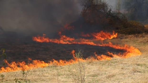 A brush fire in Chilliwack, B.C., on Thursday burned quickly through dry grass after weeks of sunny weather across the province.