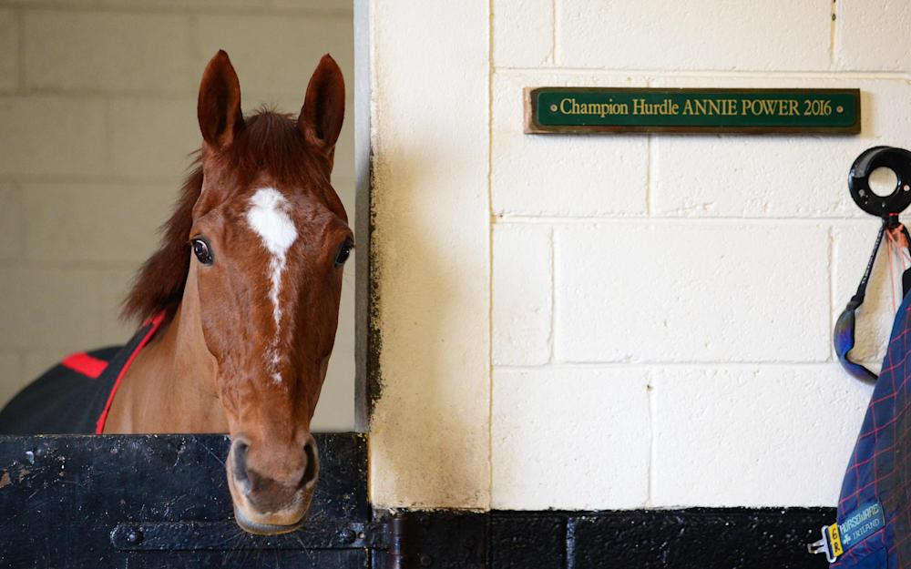 Annie Power - Credit: PA