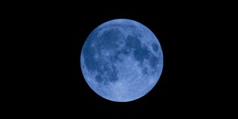 Flower blue moon. (PHOTO: Getty Images)