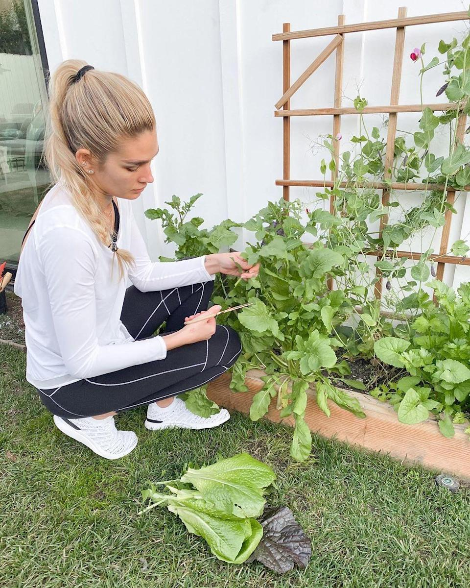 """<p>""""I'll be planted right here in my garden for the remainder of the day 🌱,"""" the pun-happy chef and model — who recently ended her <a href=""""https://people.com/tv/shayna-taylor-shares-quote-on-love-after-ryan-seacrest-split/"""" rel=""""nofollow noopener"""" target=""""_blank"""" data-ylk=""""slk:on-and-off relationship with Ryan Seacrest"""" class=""""link rapid-noclick-resp"""">on-and-off relationship with Ryan Seacrest</a> — captioned <a href=""""https://www.instagram.com/p/CBOy0pcDEsk/"""" rel=""""nofollow noopener"""" target=""""_blank"""" data-ylk=""""slk:this Instagram photo"""" class=""""link rapid-noclick-resp"""">this Instagram photo</a>. </p> <p>""""In a time where there is so much emotion, stress and anxiety, being outside and being with nature is an amazing way to destress and reground yourself,"""" she wrote of the benefits of gardening during the coronavirus pandemic. </p>"""