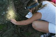 "<p>Break out those camping-use-only flashlight for this at-home scavenger hunt — and see what kids can, well, see at night as they search for rocks, leaves, and other backyard staples.</p><p><em><a href=""https://www.lifeissweeterbydesign.com/flashlight-scavenger-hunt/"" rel=""nofollow noopener"" target=""_blank"" data-ylk=""slk:See more at Life is Sweeter By Design »"" class=""link rapid-noclick-resp"">See more at Life is Sweeter By Design »</a> </em></p>"