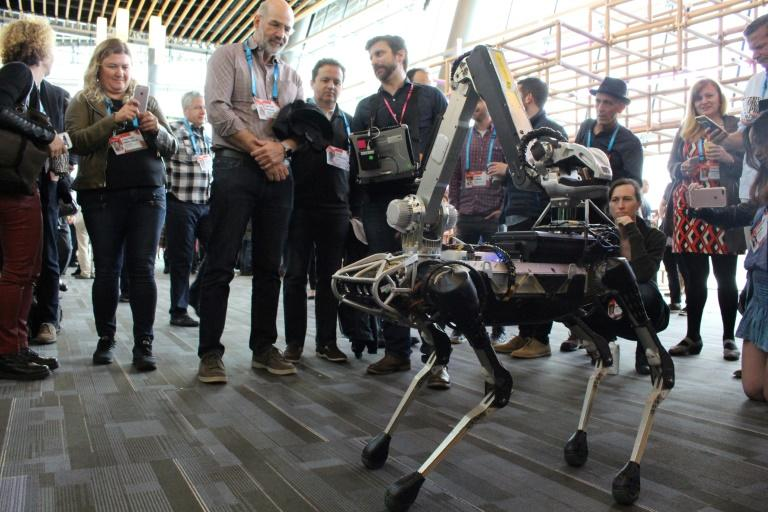 A Boston Dynamics Spot robot -- speakers at the TED conference believe in the future intelligent machines will help humans look after the elderly