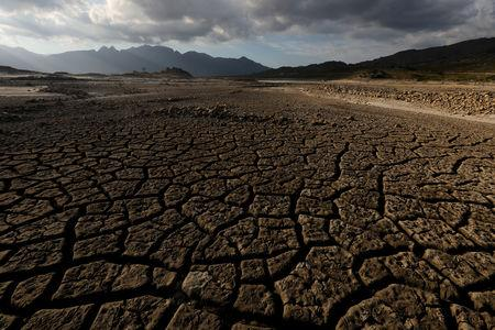 Sand blows across a normally submerged area at Theewaterskloof dam near Cape Town, South Africa, January 21, 2018. REUTERS/Mike Hutchings/Files