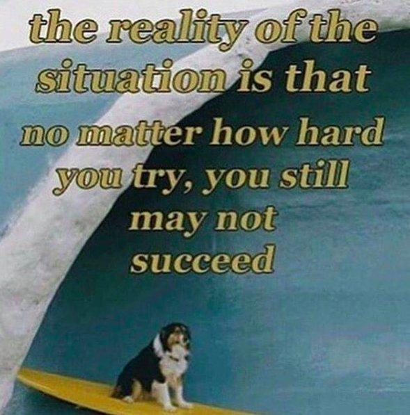 the reality of the situation is that no matter how hard you try, you still may not succeed