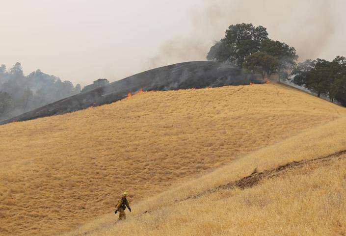 """<div class=""""inline-image__caption""""><p>A firefighter prepares to fight back a portion of the LNU Lightning Complex fire about two miles south of the Cache Creek Casino Resort.</p></div> <div class=""""inline-image__credit"""">Dave Kempa</div>"""
