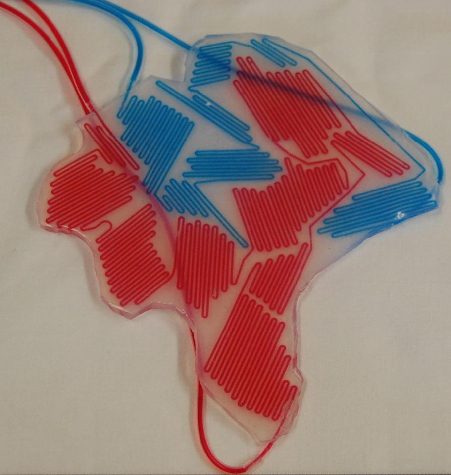 A color layer used in the camouflage and display of soft robots. The microchannels are filled with red and blue dyes. (Photo courtesy of S. Morin/Harvard University)