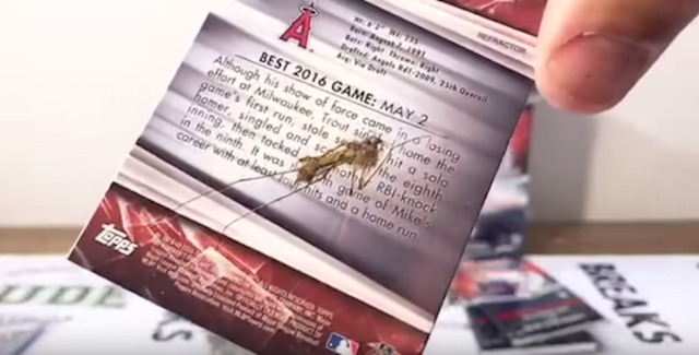"John Ehler opened a card pack to find a <a class=""link rapid-noclick-resp"" href=""/mlb/players/8861/"" data-ylk=""slk:Mike Trout"">Mike Trout</a> card with a surprise in it: an actual squished bug. (Youtube)"
