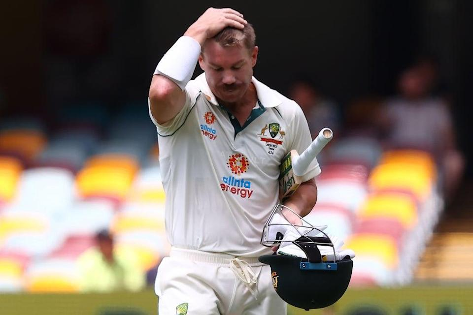 David Warner has played for various clubs in the IPL (AFP via Getty Images)