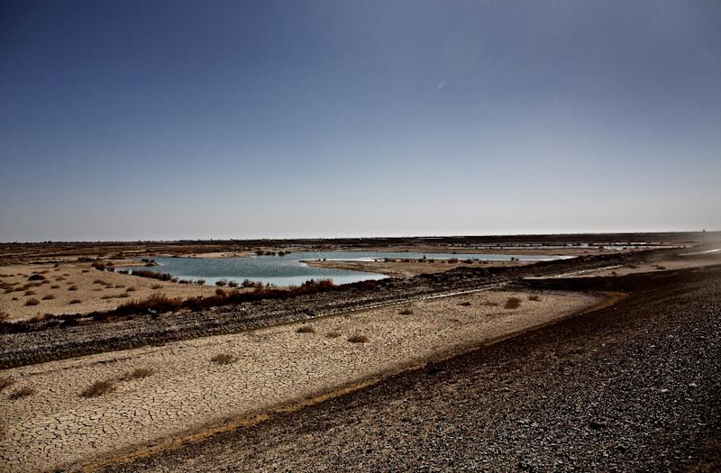 Only 15 years ago, Hamoun was the seventh largest wetland in the world, straddling 4,000 square kilometres (1,600 square miles) between Iran and Afghanistan, with water rolling in from the latter's Helmand river (AFP Photo/Behrouz Mehri)