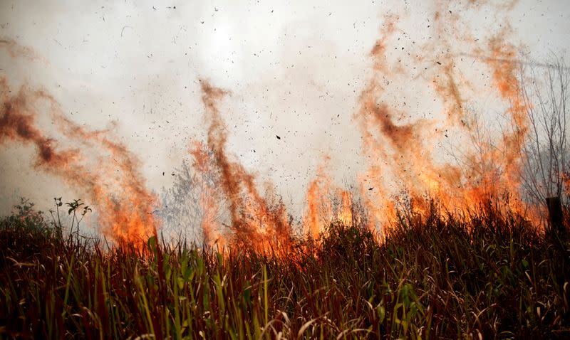 FILE PHOTO: Tract of the Amazon jungle burns as it is cleared by loggers and farmers in Porto Velho