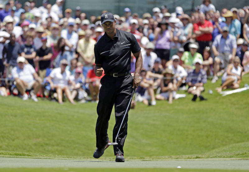 Tiger Woods pumps his fist as his ball goes in the cup for birdie on the ninth hole during the second round of The Players championship golf tournament at TPC Sawgrass, Friday, May 10, 2013 in Ponte Vedra Beach, Fla. Woods shot 5-under-par for the round, for a two-day score of 10-under par. (AP Photo/John Raoux)