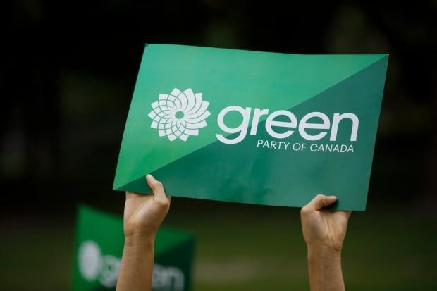 Four New Brunswickers are vying for a seat on the Green Party of Canada's national council to represent the province. (Cole Burston/The Canadian Press - image credit)