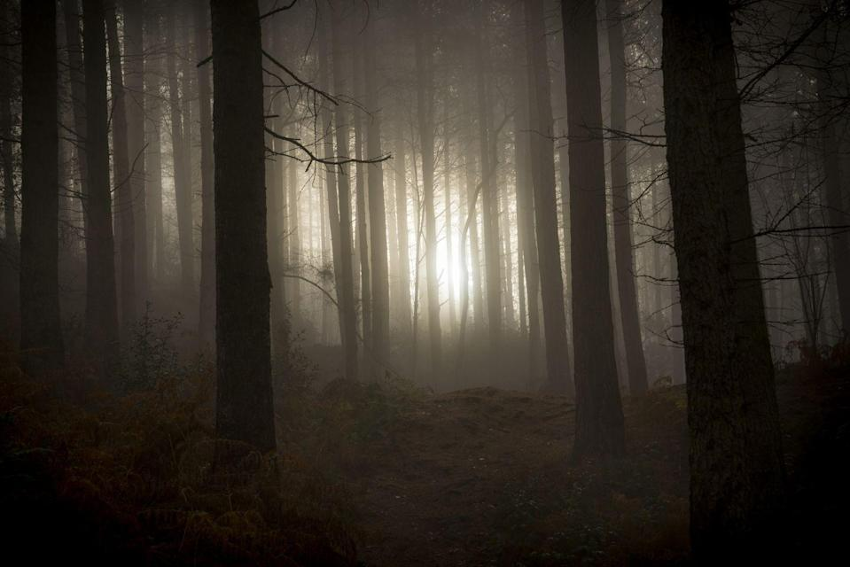 """<p>The Haynesville Woods is home to the legend of <a href=""""https://www.onlyinyourstate.com/maine/urban-legends-me/"""" rel=""""nofollow noopener"""" target=""""_blank"""" data-ylk=""""slk:The Ghost Bride"""" class=""""link rapid-noclick-resp"""">The Ghost Bride</a>. The story goes that late one winter night, a newlywed couple were traveling, and the groom, who was kind of drunk, lost control of the car. The vehicle swerved off the road, hit a pole, and he died instantly. The bride survived the crash and crawled from the wreckage only to get lost in the isolated, snowy woods. She never made it out alive. </p><p>She is said to still haunt the very woods where she supposedly lost her life. Some even say they've spoken to her, but she vanishes shortly thereafter.</p>"""