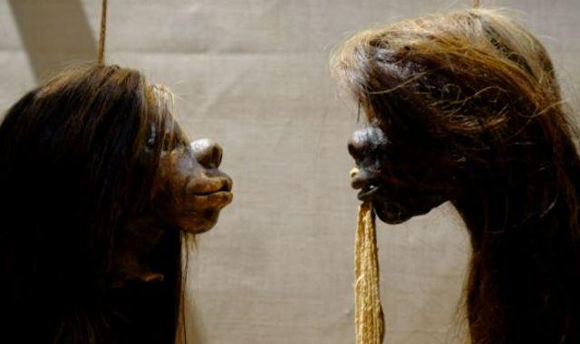 'Shrunken heads' removed from display as museum seeks to 'decolonise' collection