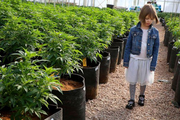 PHOTO: Charlotte Figi walks around inside a greenhouse in a remote spot in the mountains west of Colorado Springs, Colo. (Brennan Linsley/AP, FILE)