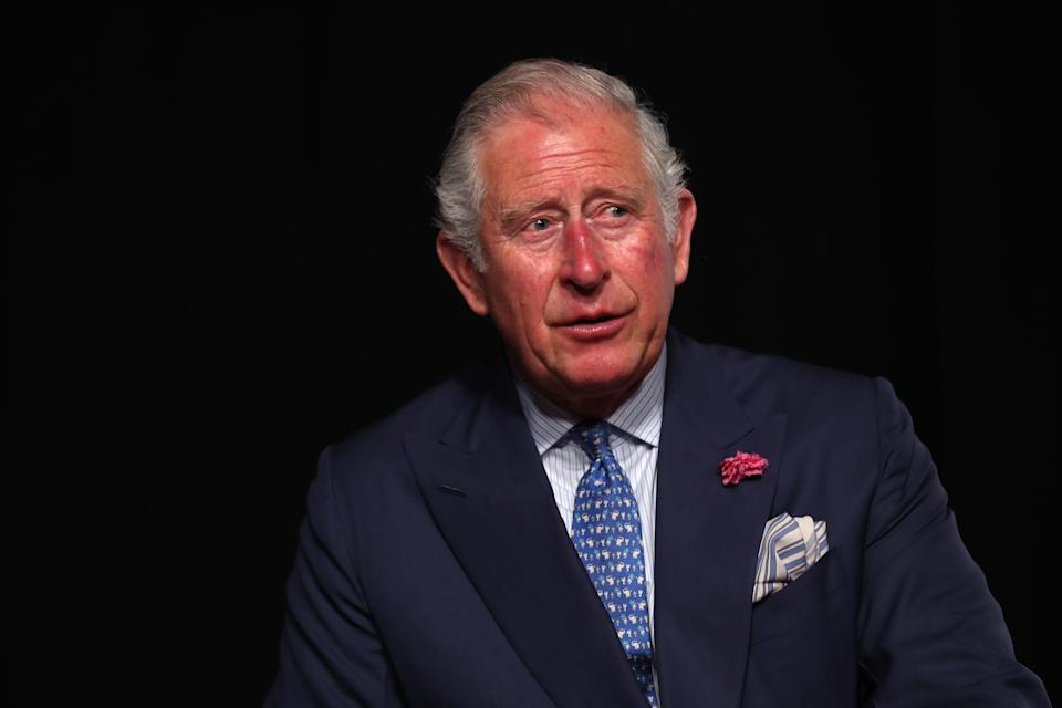 <p>'The prince wants to bring people in to connect with the institution,' said a royal source</p> (Getty)