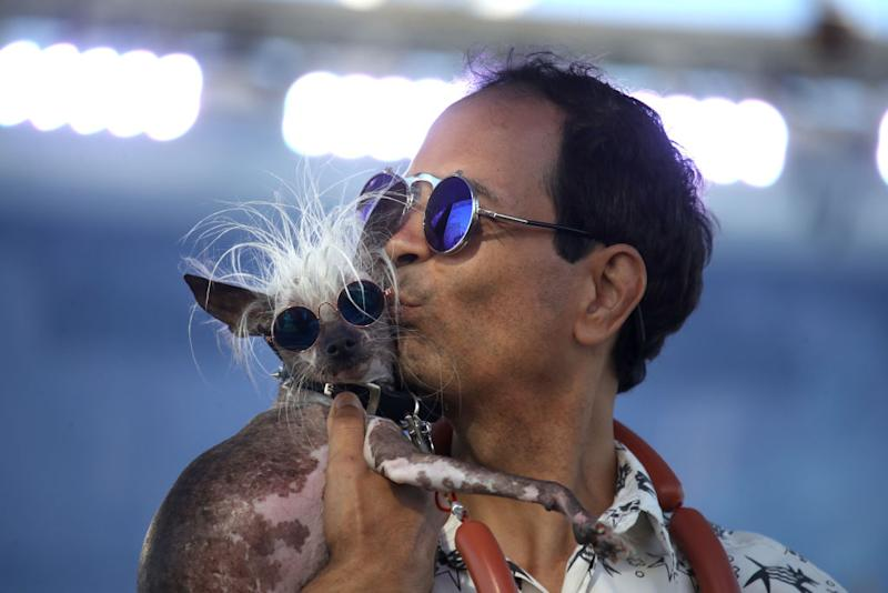 Dane Andrew holds his dog Rascal during the World's Ugliest Dog contest at the Marin-Sonoma County Fair on June 21, 2019 in Petaluma, California. A dog named Scamp the Tramp from Santa Rosa, California won the annual World's Ugliest Dog contest. | Justin Sullivan—Getty Images