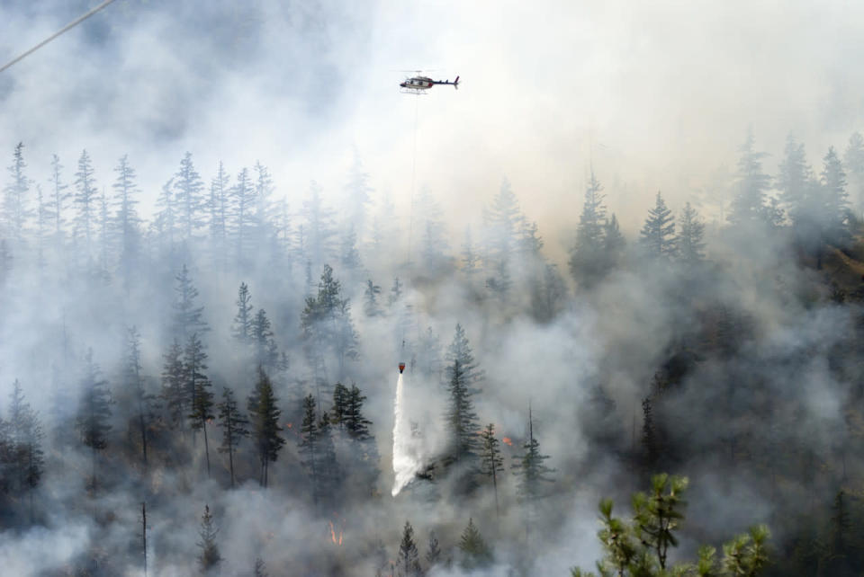 Tracking climate change's impact on Pacific Northwest's devastating heat wave