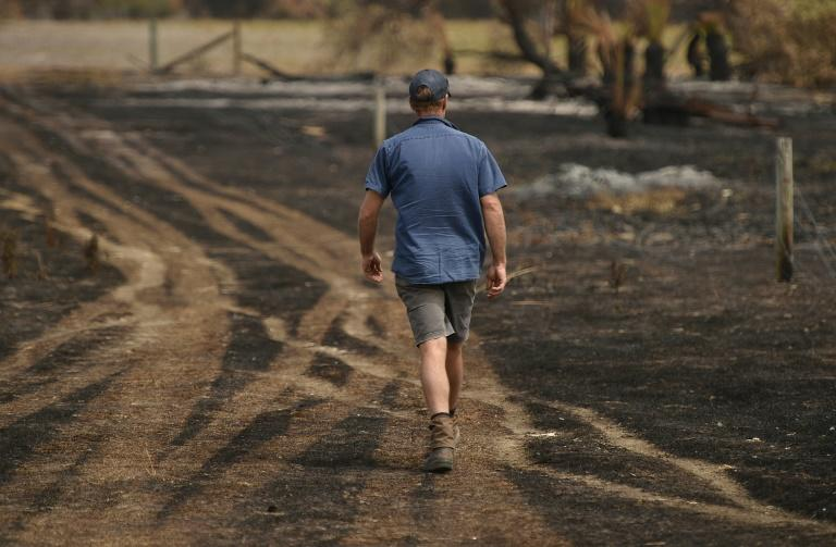 Farmers like Rick Morris endured three blazes in just 10 days (AFP Photo/PETER PARKS)