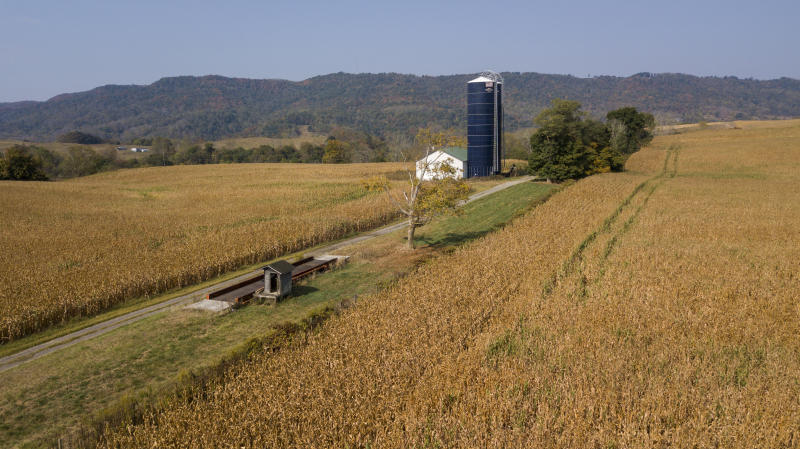 This Oct. 1, 2019 aerial photos shows farm buildings surrounded by a crop of corn on a farm owned by the family of West Virginia Gov. Jim Justice near Lewisburg, W.Va. Justice Farms of North Carolina, which is owned by the family of Justice, raked in tens of thousands of taxpayer dollars under a subsidy program President Donald Trump set up to help farmers hurt by his trade war with China. (AP Photo/Steve Helber)