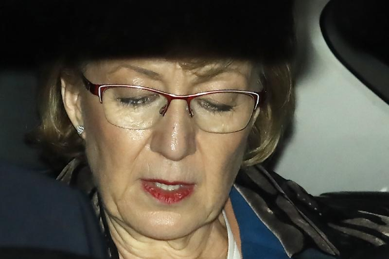 Andrea Leadsom lost out to May in the 2016 leadership race (AFP Photo/Tolga AKMEN)