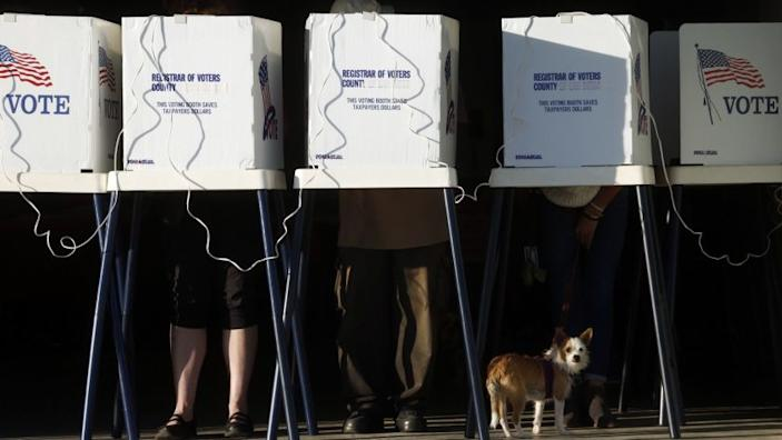 "A dog rests beneath a row of voting booths in a Los Angeles County election. <span class=""copyright"">(Genaro Molina / Los Angeles Times)</span>"