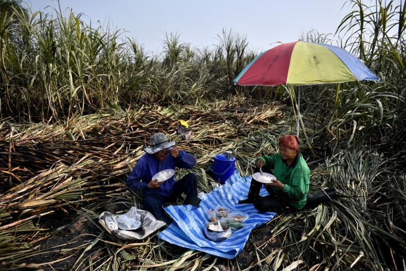 Sugar cane farmers have a lunch after working in a burnt field, a practice which authorities banned to avoid smog, Suphan Buri province, north of Bangkok