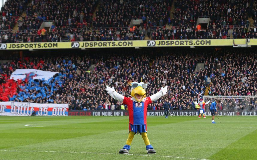 Charlton fan accused of trying to 'punch' Crystal Palace's bald eagle