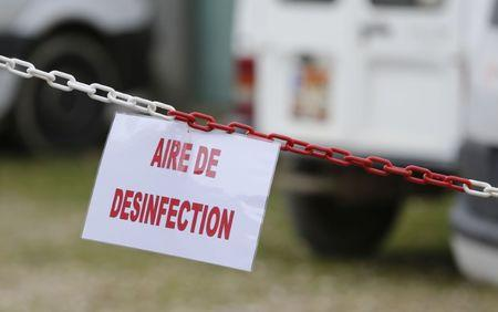 "A sign which reads, ""Disinfection area"" hangs from a chain at a duck farm in Montsoue as France continues a massive cull of ducks in three regions most affected by a severe outbreak of bird flu"