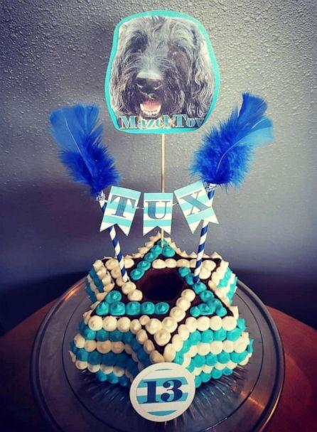 PHOTO: The dog bakery makes cakes for all occasions, including 'Gender Reveal' parties and 'Bark Mitzvahs.' (via The Seattle Barkery)