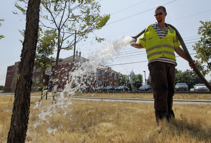 Jerome Delbridge of Keep Indianapolis Beautiful uses a fire hose to water trees along the interstate in downtown in Indianapolis, Thursday, June 28, 2012. Keep Indianapolis Beautiful is urging residents to water their trees as temperatures top 100 degrees in Central Indiana. (AP Photo/Michael Conroy)