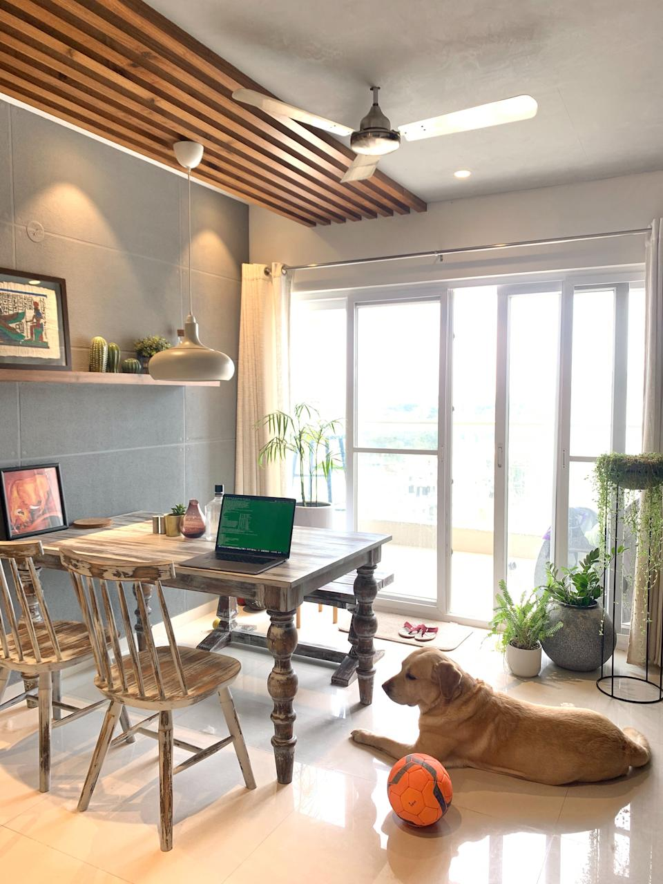 When working from home feel like working from a coffee shop and you can also bring your pets <em>Photo credit: Vijesh Kaitheri Edathil</em>