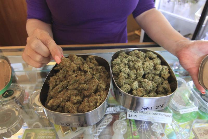 Jamie Shaw displays two different varieties of medical marijuana available  at the East Vancouver marijuana dispensary in East Vancouver, British Columbia