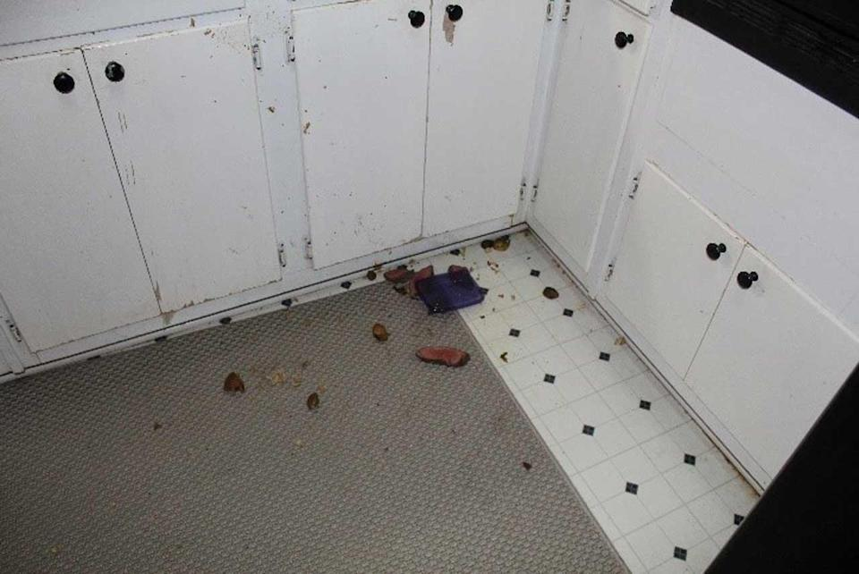 Food thrown on the ground at the crime scene made investigators question if the shooting was accidental, as Mary Katherine had claimed initially, or if foul play might have been involved.    / Credit: Spalding County District Attorney's Office