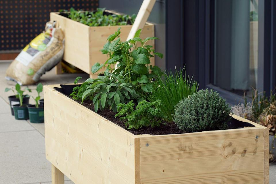 """<p>Starting a garden is no easy task, and it can be especially challenging if the terrain on your property isn't amenable to <a href=""""https://www.bestproducts.com/home/decor/g3260/best-indoor-plants-for-your-house/"""" rel=""""nofollow noopener"""" target=""""_blank"""" data-ylk=""""slk:the types of plants"""" class=""""link rapid-noclick-resp"""">the types of plants</a> you'd like to grow. </p><p>Enter: the raised garden bed. It's a box-shaped unit that allows you to plant a small patch of flowers, herbs, and vegetables<a href=""""https://www.gardeners.com/how-to/raised-bed-basics/8565.html"""" rel=""""nofollow noopener"""" target=""""_blank"""" data-ylk=""""slk:just about anywhere outdoors"""" class=""""link rapid-noclick-resp""""> just about anywhere outdoors</a>. Raised garden beds are either installed right on top of the ground for permanent placement or are raised troughs that can be picked up and moved. They are made of a variety of materials like wood, plastic, and even powder-coated metal and come in a range of different sizes to fit any need.</p><h3 class=""""body-h3"""">How We Chose</h3><p>Knowing that size and design preferences play a big part in determining the best raised garden bed for one's home, we researched units to span a wide range of setups and materials. We sifted through hundreds of user reviews and took into account the ease of setup and durability of each raised bed. </p><p>Here are the 11 best raised garden beds of varying shapes and sizes for your greens to call home. </p><hr><p><em><strong><em>Want to </em><em>build your own DIY raised garden bed? Learn how by joining Pop Mech Pro!</em></strong></em></p><p><a class=""""link rapid-noclick-resp"""" href=""""https://www.popularmechanics.com/home/how-to-plans/a31400913/raised-garden-bed/"""" rel=""""nofollow noopener"""" target=""""_blank"""" data-ylk=""""slk:Get The Step-By-Step Plans"""">Get The Step-By-Step Plans</a></p><hr>"""