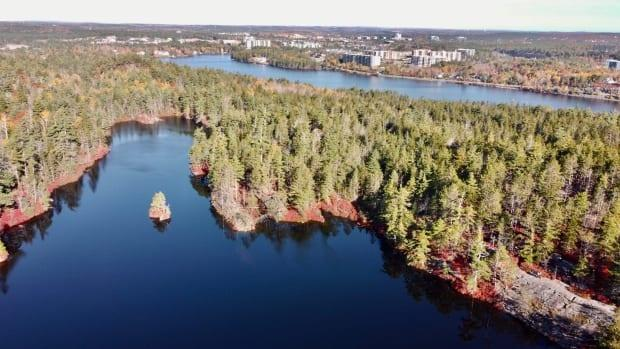 Blue Mountain-Birch Cove Lakes Wilderness Area in Halifax is being extended as part of Thursday's announcement.