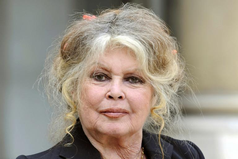 Brigitte Bardot: sexual harassment protestors are 'hypocritical' and 'ridiculous'