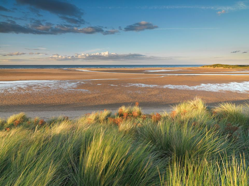 The beach at Holkham - getty
