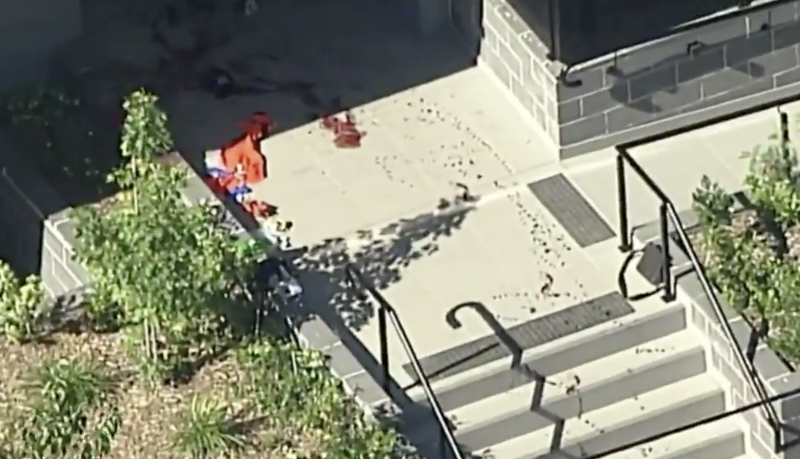 A trail of blood left at the scene. Source: Nine News