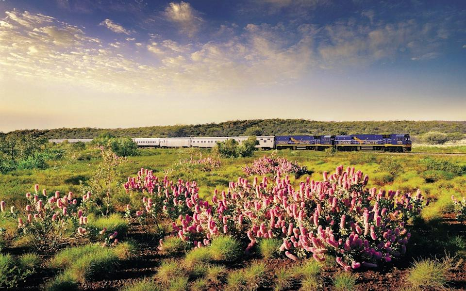 Travel 2,700 miles across Australia on the Indian Pacific