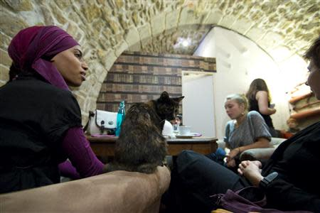 "Customers enjoy a beverage next to a cat at the ""Cafe des Chats"" several days before the inauguration in Paris September 16, 2013. REUTERS/Gonzalo Fuentes"