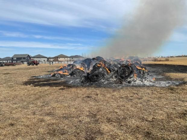 Parkland RCMP and the Parkland Fire Department responded to reports of an arson north of Highway 16A and west of Jennifer Heil Way in Spruce Grove, Alta., on Saturday. (Submitted by Parkland RCMP - image credit)