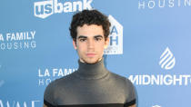 Boyce was a Disney Channel star, as well as an actor in the <em>Grown Ups</em> films and 2008 horror <em>Mirrors</em>. He died aged just 20 as a result of complications due to epilepsy. (Photo by Jon Kopaloff/Getty Images)