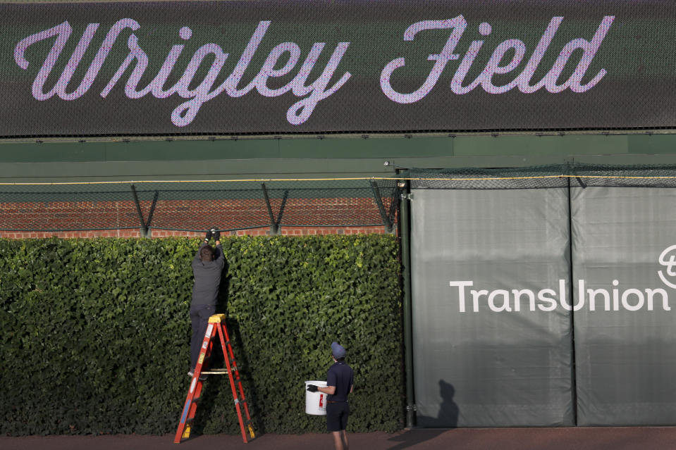 A Chicago Cubs employee retrieves a baseball from the right field basket after batting practice and before a baseball game between the Chicago Cubs and the Kansas City Royals Tuesday, Aug. 4, 2020, in Chicago. (AP Photo/Charles Rex Arbogast)