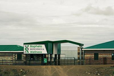 Bophelo operations expanded from 5,400 square feet to over 21,000 square feet of flowering canopy. Currently, this year's harvest is expected to yield 750 kilograms of product, selling 1,000 kilograms this year. (CNW Group/Halo Collective Inc.)