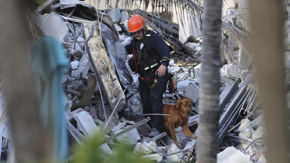 A rescue worker searches the rubble for survivors with a dog after an apartment building partially collapsed in Surfside, Fla., Thursday. (David Santiago/Miami Herald via AP)